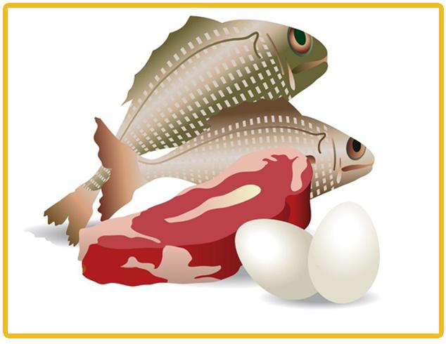 mea eeg fish